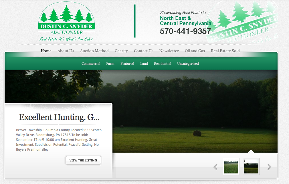 New Website design for Auctioneer
